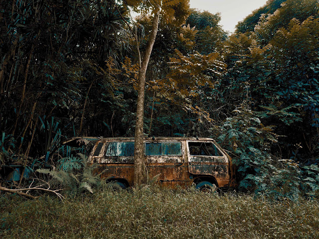 Photographer Thomas Strogalski Captured Wonderful Images Of Abandoned Cars Swallowed By Hawaii's Jungles
