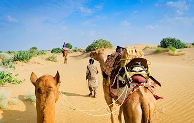 Rajasthan  GK | #Liveclass  #Reet #Patwar