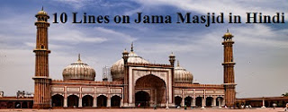 10 Lines on Jama Masjid in Hindi