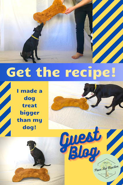 Larger than life recipe: Learn how you can make this giant dog treat