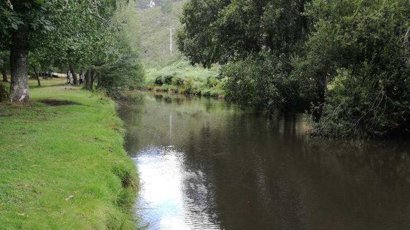 Zona Fluvial do Rio Mondego no Covão da Ponte
