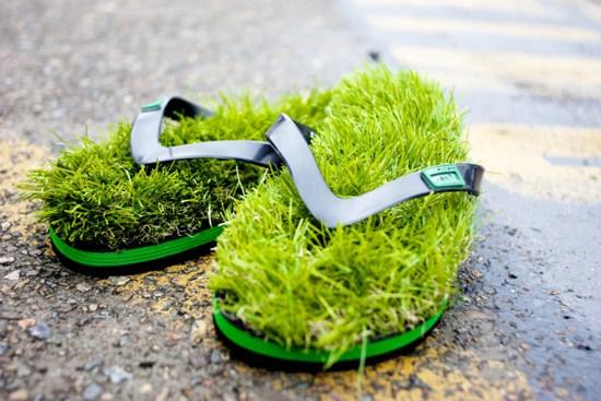Kausa grass slipper
