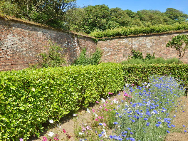 Walled flower garden at Heligan