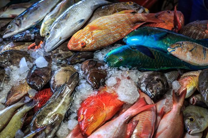 Arti Mimpi Membeli Ikan
