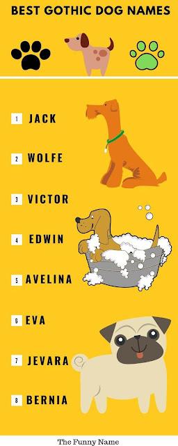 Gothic Dog Names
