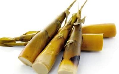 Luruhkan Batu Ginjal dengan Rebung Bambu Kuning