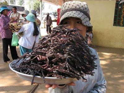 شاهد بالصور أغرب الأكلات الشعبية في الصين: بعضها متهم بنشر كورونا