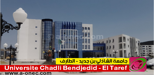 Université chadli bendjedid eltarf