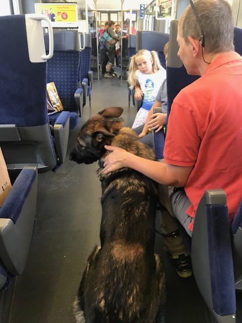 列車の中では子供も犬も行儀が良い