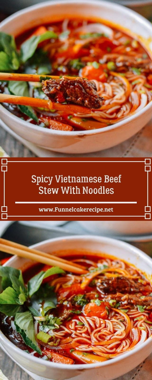 Spicy Vietnamese Beef Stew With Noodles