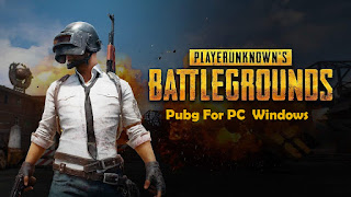 Pubg For PC Windows