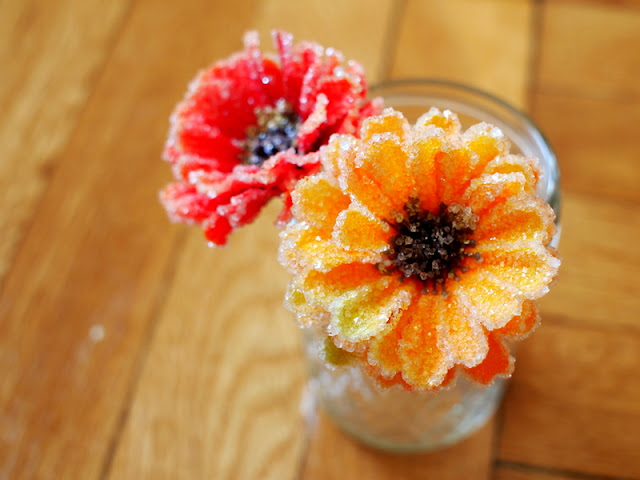 tutorial to make borax crystal flowers