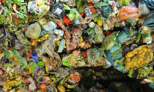Sampah organik dapat diolah menjadi