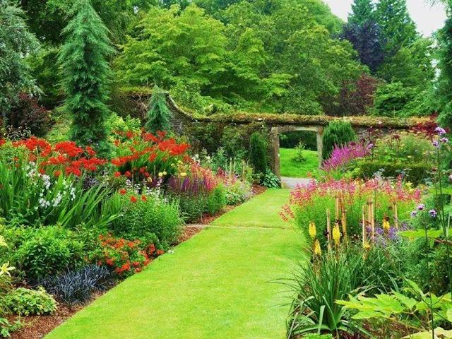 vườn địa đàng the green daisy