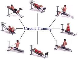 components of fitness muscular endurance
