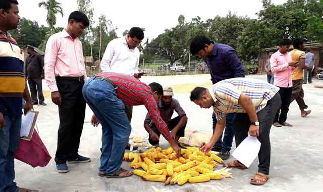 BADC Ground Day with farmers in Thakurgaon