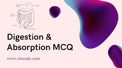 Digestion and Absorption NEET MCQ Pdf
