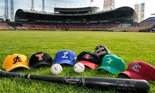 béisbol Dominicano 2013-2014