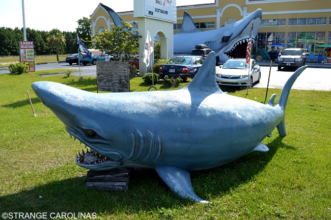 World's Largest Shark (Sneads Ferry, NC)
