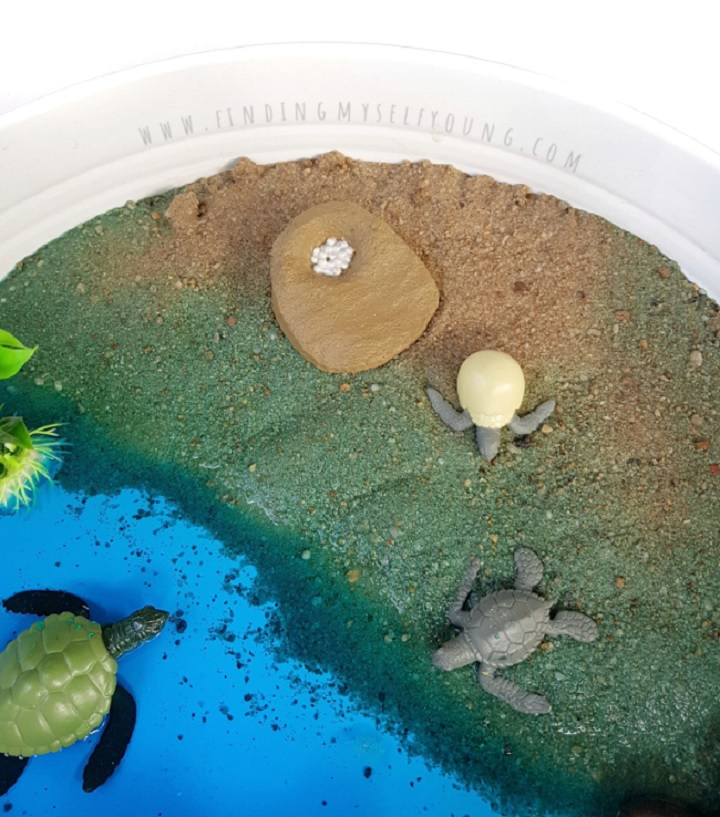 safari ltd turtle life cycle figurines