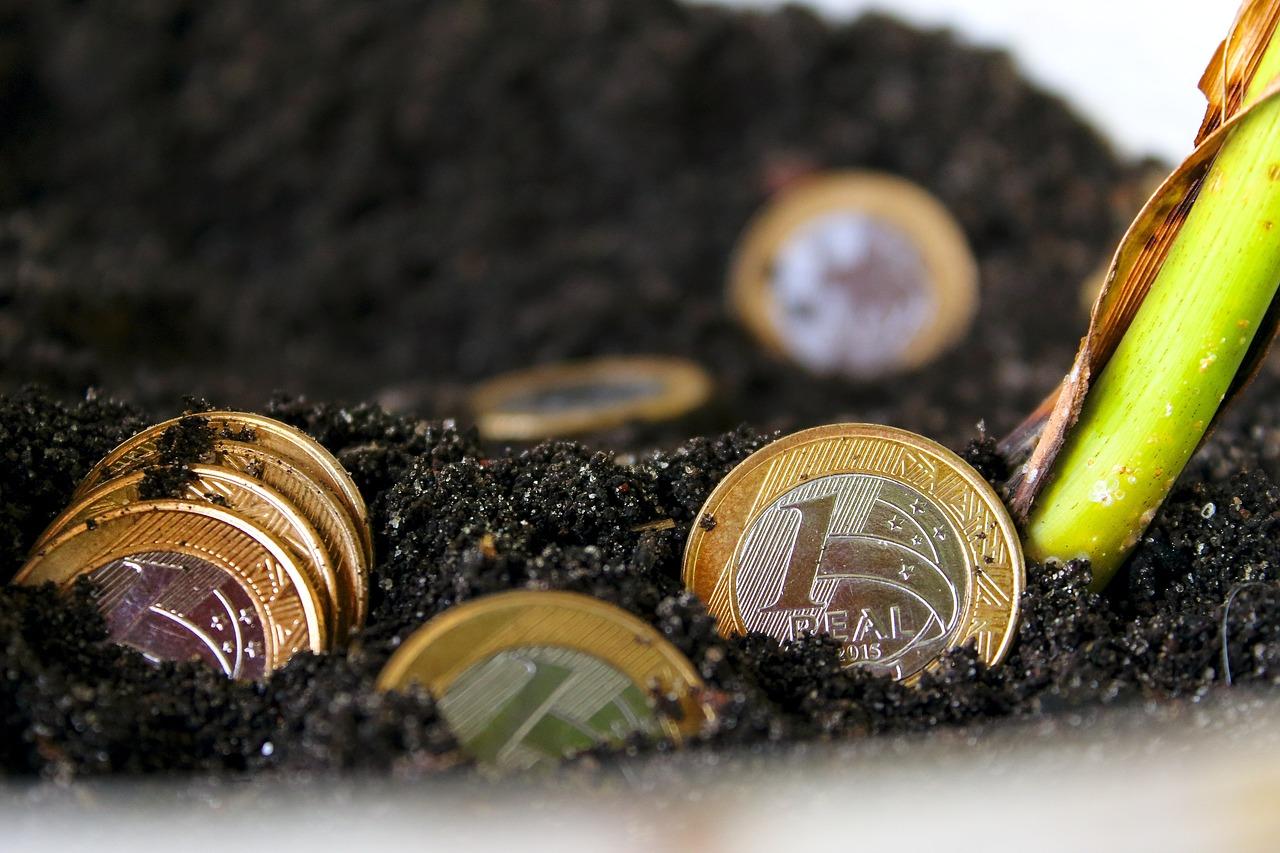 5 sugestões de investimentos com baixo orçamento - Café com Net
