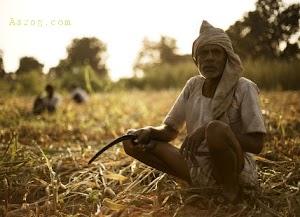 Corona Virus की वजह से भारतीये किसानो पर पडने वाला बुरा असर