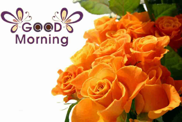 Awesome good morning image with orange rose flowers bouquet have a good day