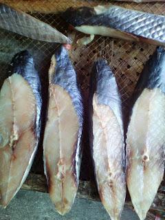 Cung cấp Cá thu 1 nắng và các loại cá 1 nắng khác - DNTN thực phẩm Hoa Phượng