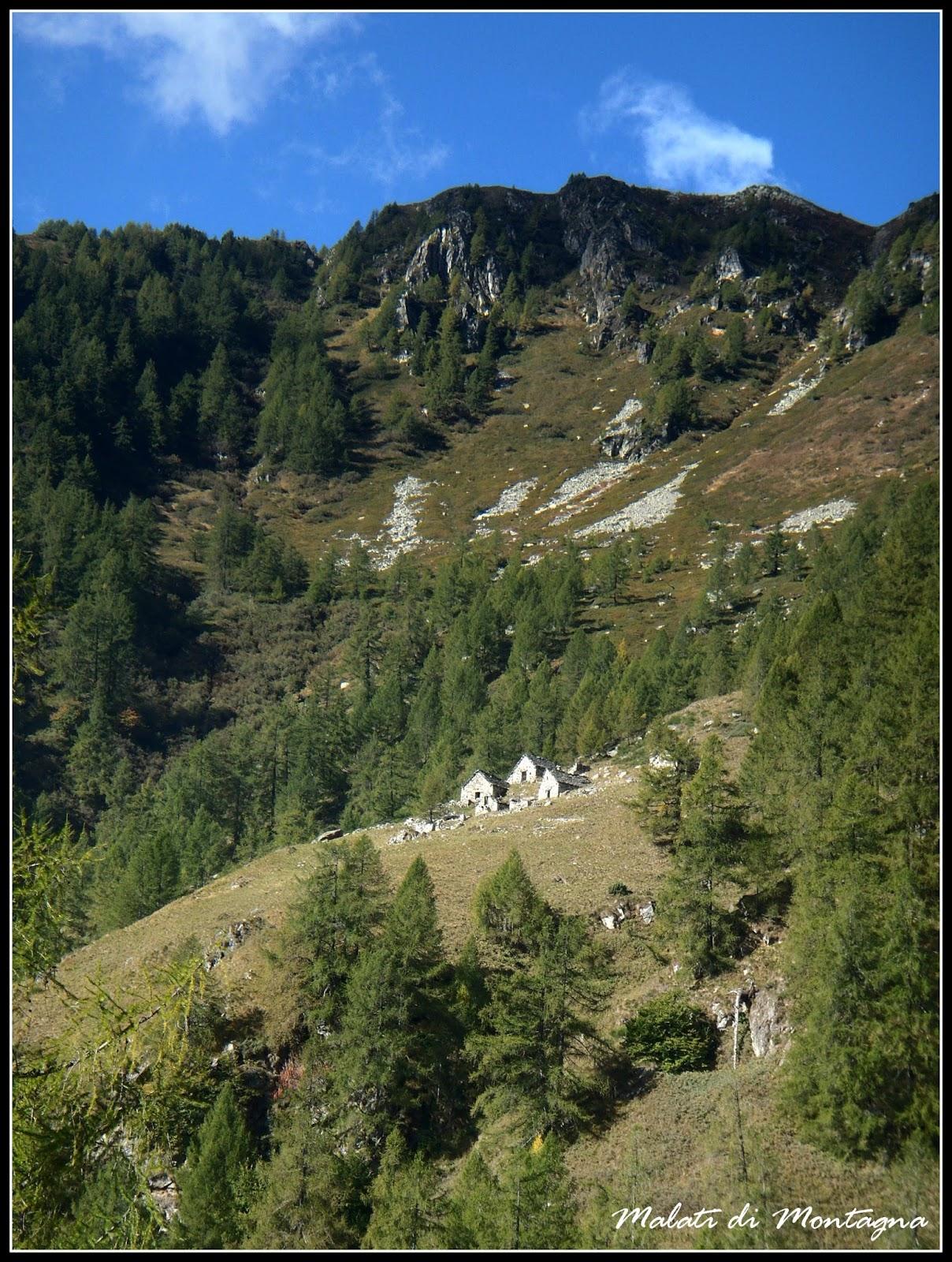 Malati di montagna alla ricerca dei cusciui - Riscaldare velocemente casa montagna ...