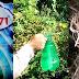हिमाचल: पत्नी ने पी ली घास जलाने वाली दवा- बीमार पति, 2 बेटियों और बेटे को छोड़ गई
