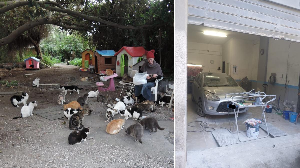 Polizia Municipale Vigilanza ambientale salvataggio 50 gattini da incendio
