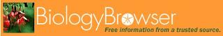 biology-browser