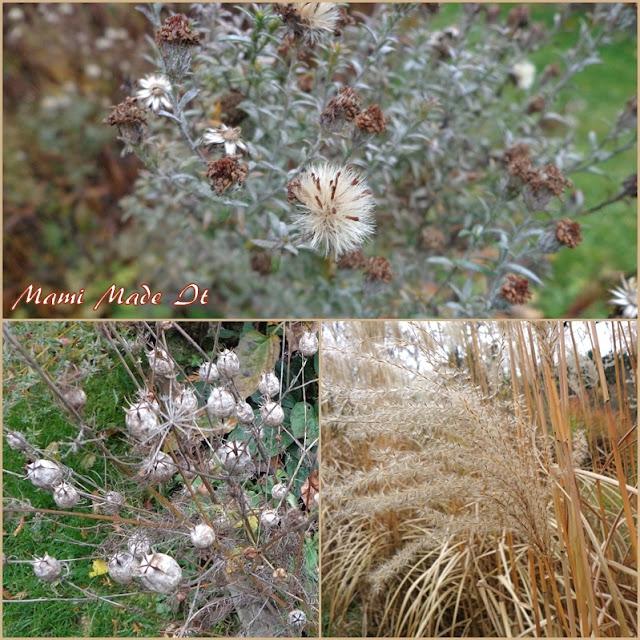 Windmond - November