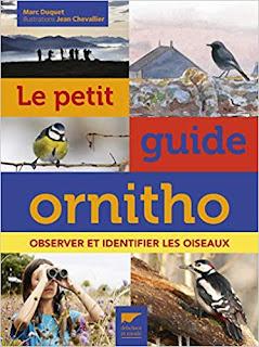 Le petit guide ornitho - Duquet - delachaux - plumages.fr