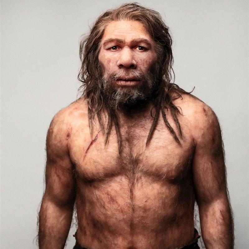penis la neandertali