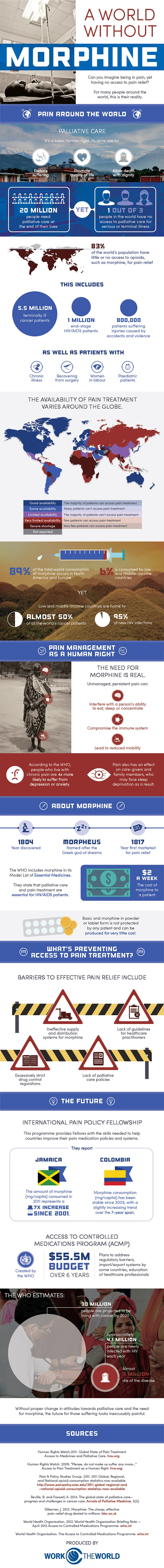 A World Without Morphine #infographic #Health #Morphine