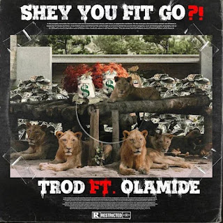 [MUSIC] TROD Ft OLAMIDE – Shey You Fit Go?!