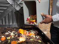 Cara Mengelola Sampah Rumah Tangga yang Baik dan Benar