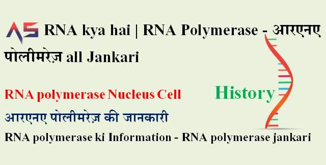 RNA kya hai | RNA Polymerase - आरएनए पोलीमरेज़ RNA Cell Nucleus