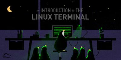 Infografis Kumpulan Perintah Dasar Terminal di Linux