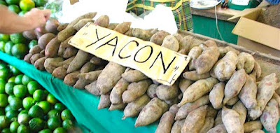 Amazing Benefit Of Yacon Root Syrup