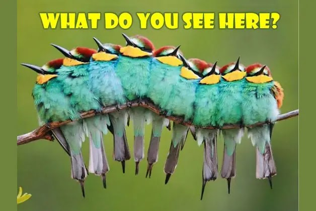 When Did You See It?