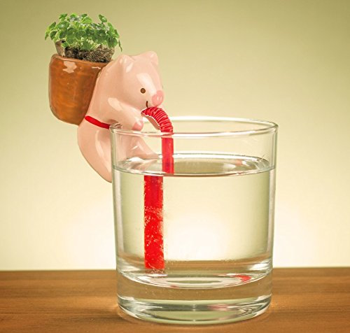 01-Pig-Chuppon-Self-Watering-Animal-Planter-www-designstack-co