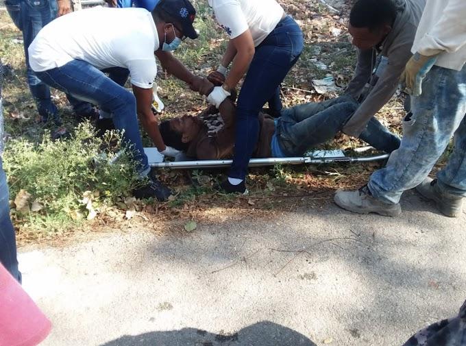 Dos jóvenes casi pierden la vida  en la entrada de La Guázara