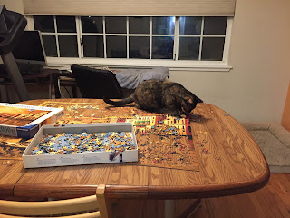 Semi-feral tortie plays on table with partially-assembled puzzle