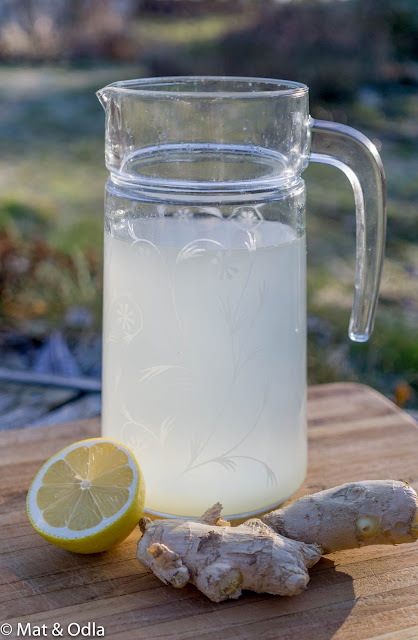 citron- och ingefärsdryck