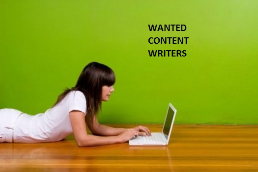 Professional Content Writer in Delhi,  SEO Content writer in New Delhi