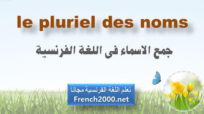 جمع الاسماء فى اللغة الفرنسية