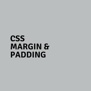 CSS Margin and Padding intro image