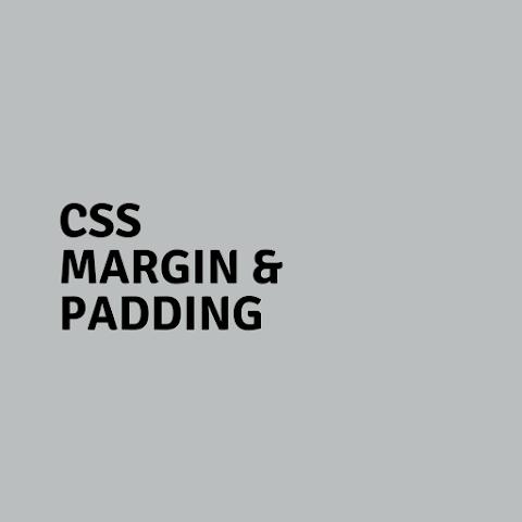 CSS Margin and Padding